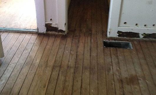 water damage wood floors