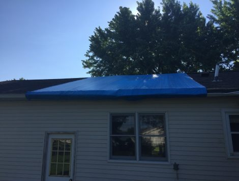 wind damage tree impact before